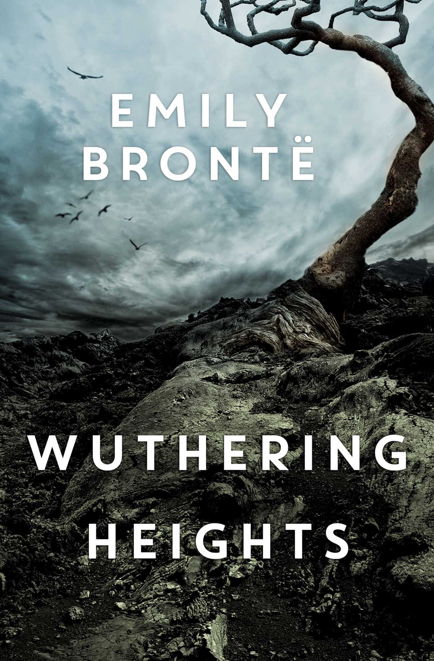 "Book Review of ""Wuthering Heights""."